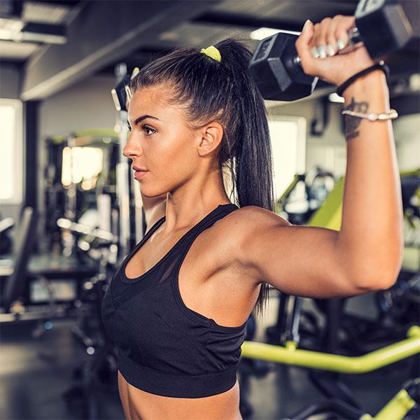 Kraft & Muskelaufbau
